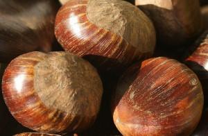 castagne-bollite