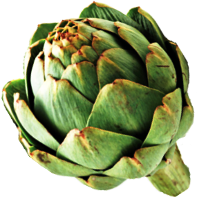 carciofo1